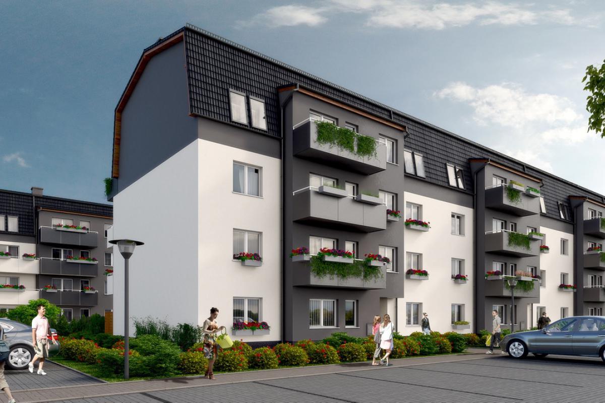 Osada Oliwkowa - Smolec, ul. Oliwkowa, Omega Buildings Sp. z o.o. B Sp.k. - zdjęcie 1