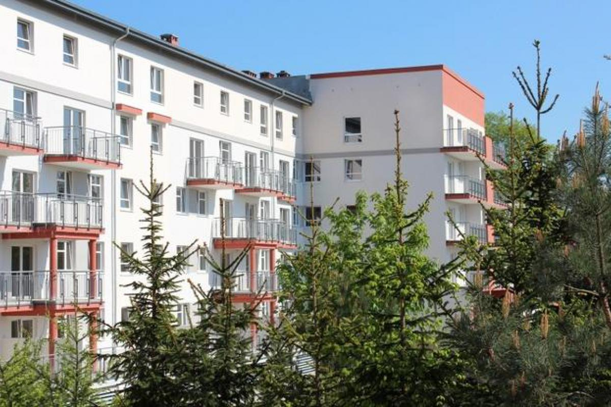 Pod Sześcioma Lipami - Szczecin, Żelechowa, ul. Hoża, Steed S.A. - zdjęcie 2