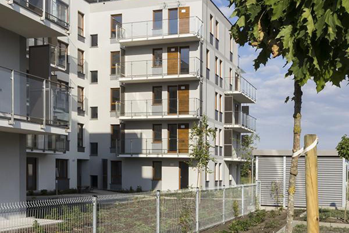 Ecoria - Poznań, Naramowice, ul. Karpia 25, Erigo Development Sp. z o.o. - zdjęcie 2