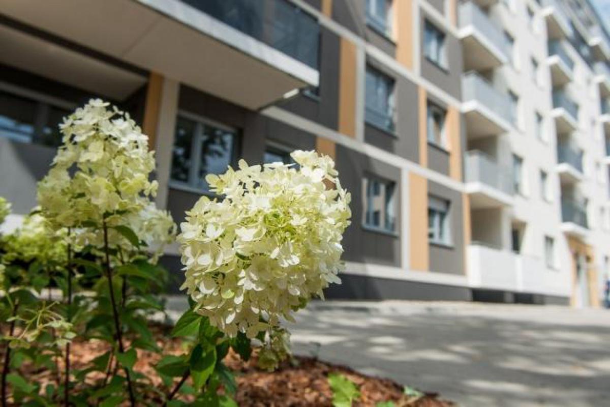Lokum Viva - Wrocław, Szczepin, ul. Litomska, Lokum Deweloper S. A. - zdjęcie 6