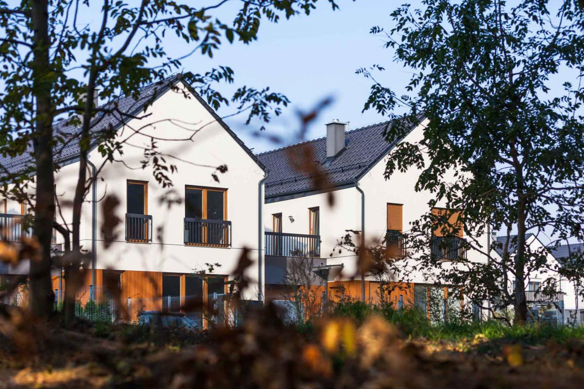 Małe Wilczyce - Wilczyce, BNM Development Sp. z o.o. - zdjęcie 2