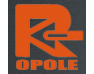 REMBUD - logo dewelopera