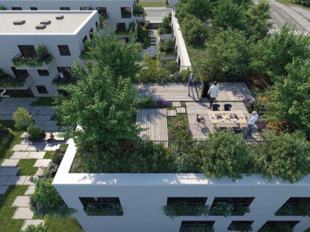 mieszkania Trójpole