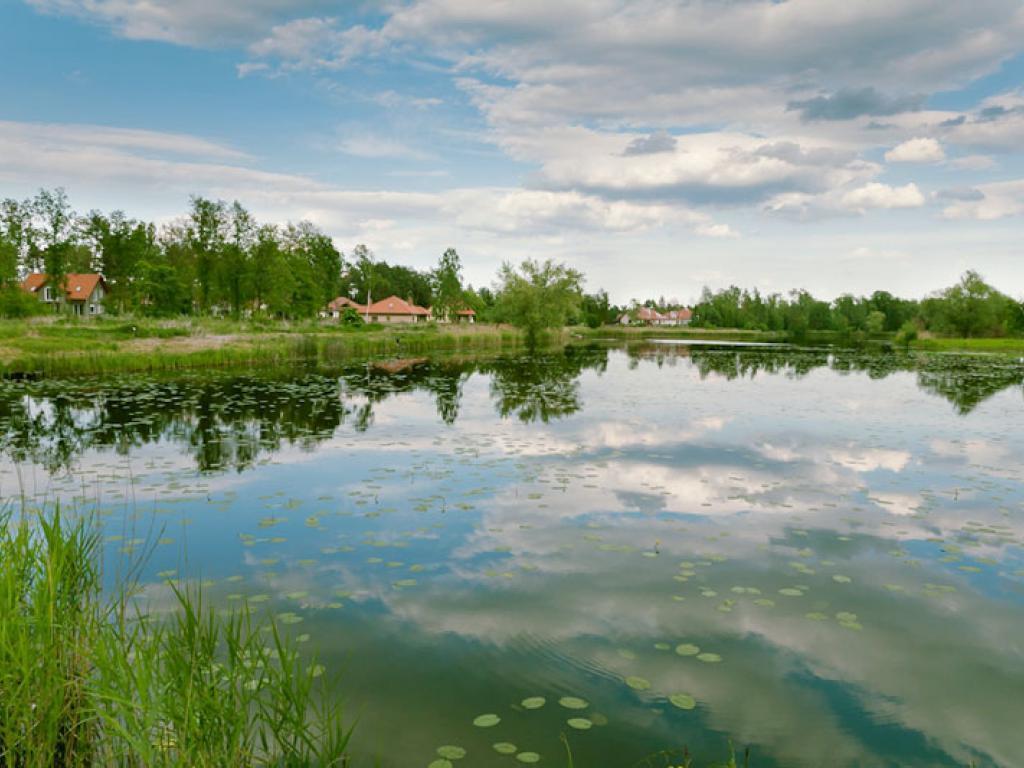 Osiedle Błękitny Staw w Biedrusku, źródło: Novum Plus